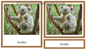 Australia/Oceania Animals - Printable Montessori Learning Materials by Montessori Print Shop.