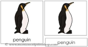 Penguin Nomenclature Cards - Printable Montessori Learning Materials by Montessori Print Shop.