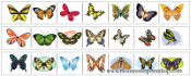 Butterfly Cutting Strips - Printable Montessori Practical Life Materials by Montessori Print Shop.