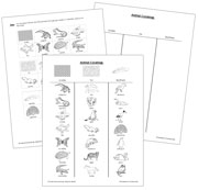 Animal Coverings: Blackline Master - Printable Montessori Learning Materials by Montessori Print Shop.