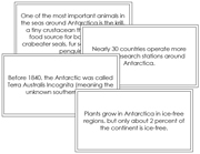 Antarctica Fun Fact Cards (borders) - Printable Montessori Materials for home and school.