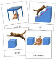 Preposition Cards - Printable Montessori Learning Materials for home and school.