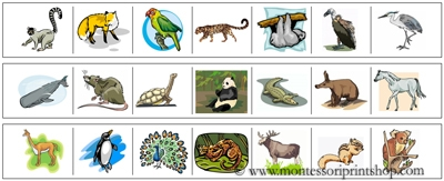 Animal Cutting Strips - Printable Montessori materials that save teachers time for Montessori Learning at home and school.
