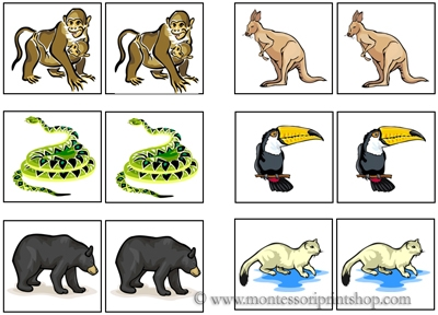 Animal Match-Up Cards for Montessori Learning at home and school
