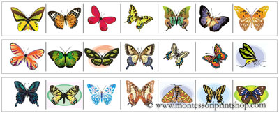 Butterfly Cutting Strips - Printable Montessori materials that save teachers time for Montessori Learning at home and school.