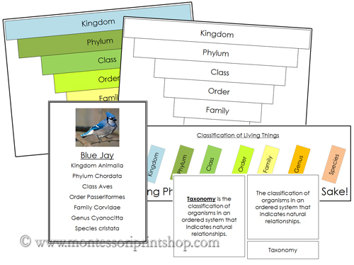 Six Kingdoms of Life Classification Concepts - Printable Montessori Science and Culture Materials for Montessori Learning at home and school.