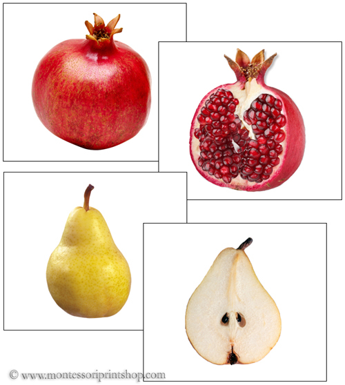 Fruit: Inside and Outside - Printable Montessori Science Materials for Montessori Learning at home and school.