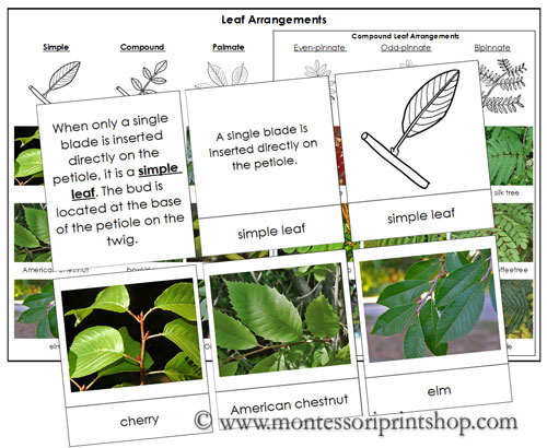 control weeds learning material pdf