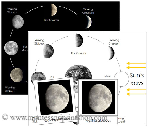 Phases of the Moon Cards and Chart - Printable Montessori Astronomy Materials for Montessori Learning at home and school.