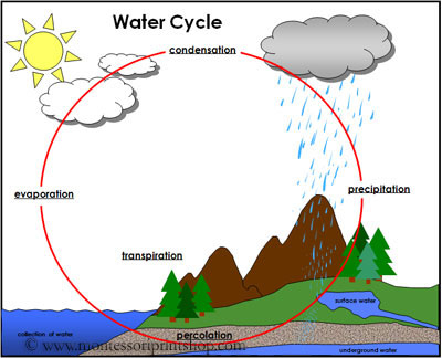 Water Cycle Cards - Printable Montessori Weather Materials for Montessori Learning at home and school.