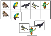 Bird Match-Up & Memory Game - Printable Montessori math materials by Montessori Print Shop.
