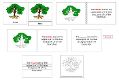 Tree Definition Set - Printable Montessori materials by Montessori Print Shop.