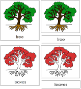 Tree Nomenclature Cards (in red)- Printable Montessori materials by Montessori Print Shop.