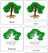 Botany Nomenclature Bundle - Set 1 - Printable Montessori Materials for children.