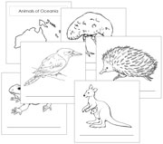 Animals of the Continent Booklets - Printable Montessori geography materials by Montessori Print Shop.
