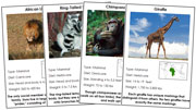 Animals of Africa - Printable Montessori science materials by Montessori Print Shop.
