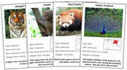 Animal Cards of Asia (Red) - Printable Montessori science materials by Montessori Print Shop.