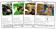 Animal Cards of South America (Red) - Printable Montessori science materials by Montessori Print Shop.