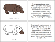 Hippopotamus Nomenclature Book - Printable Montessori Nomenclature Materials by Montessori Print Shop.