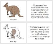 Kangaroo Nomenclature Book - Printable Montessori Nomenclature Materials by Montessori Print Shop.