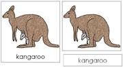 Kangaroo Nomenclature Cards - Printable Montessori nomenclature cards by Montessori Print Shop.