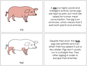 Pig Nomenclature Book - Printable Montessori Nomenclature Materials by Montessori Print Shop.