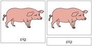 Pig Nomenclature Cards - Printable Montessori nomenclature cards by Montessori Print Shop.