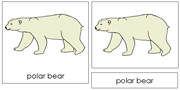 Polar Bear Nomenclature Cards - Printable Montessori nomenclature cards by Montessori Print Shop.