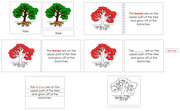 Tree Definition Set (Red) - Printable Montessori materials by Montessori Print Shop.