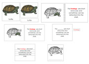Turtle Definition Set - Printable Montessori materials by Montessori Print Shop.