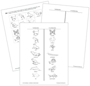 Vertebrate or Invertebrate? Blackline Masters - Printable Montessori science materials by Montessori Print Shop.