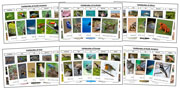 World Vertebrates Sorting Bundle - Montessori Print Shop