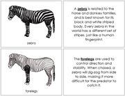 Zebra Nomenclature Book - Printable Montessori Nomenclature Materials by Montessori Print Shop.