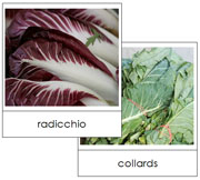 Leaf Vegetable Picture Cards Set 1 - Printable Montessori materials by Montessori Print Shop.