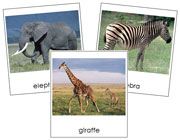 Wild Animal Cards - Printable Montessori Classified Cards by Montessori Print Shop.