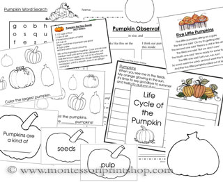 Pumpkin Starter Unit (Image from Montessori Print Shop)